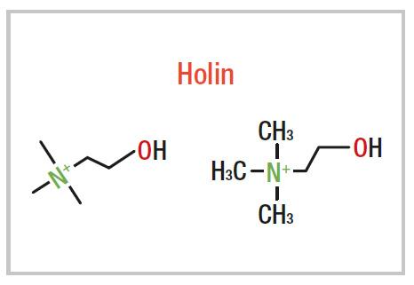 Holin L-bitartarat grafikon